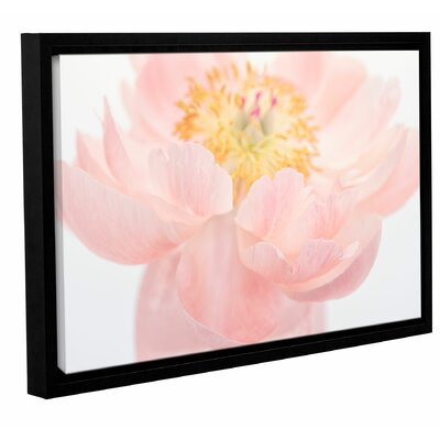 Pink Peony Framed Photographic Print on Wrapped Canvas Size: 08'' x 12''