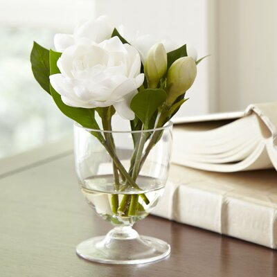Faux Gardenia in Glass Vase (Set of 2)