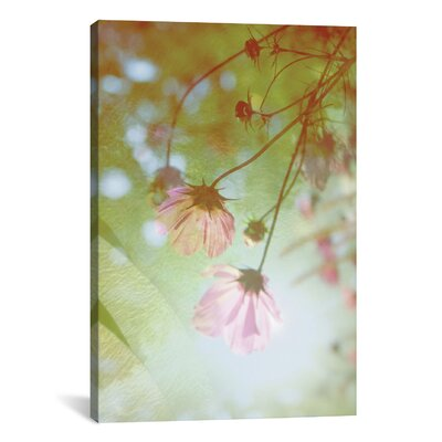 Dreamland Photographic Print on Wrapped Canvas