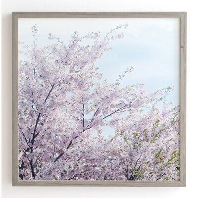 'Awakening' by Chelsea Victoria Framed Photographic Print Size: 12