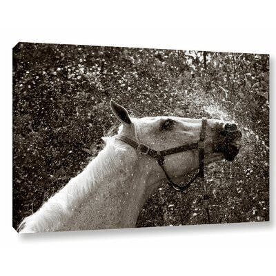 'After A Shower' Photographic Print on Wrapped Canvas