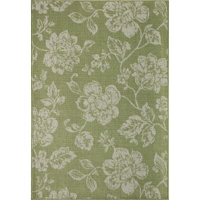 Kofi Green/White Indoor/Outdoor Area Rug Rug Size: 18 x 37