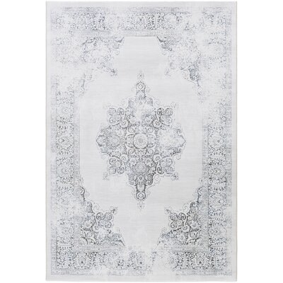 Jayson White/Gray Area Rug Rug Size: Rectangle 53 x 76