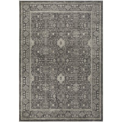 Riviere Black/Gray Area Rug Rug Size: Rectangle 710 x 106