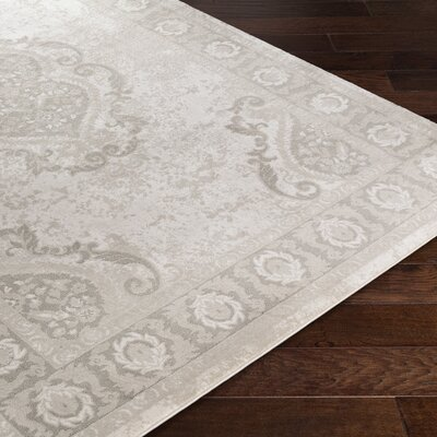 Riviere Gray Area Rug Rug Size: Rectangle 52 x 76