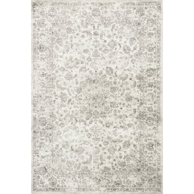 Benoit Silver Area Rug Rug Size: 33 x 47