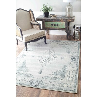 Allemans Gray Area Rug Rug Size: Rectangle 4 x 6