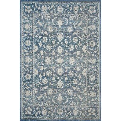 Nanteuil Blue Indoor/Outdoor Area Rug Rug Size: 5 x 76