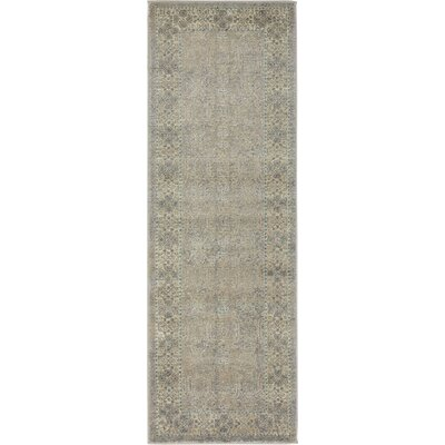 Brierfield Gray Area Rug Rug Size: Runner 27 x 10