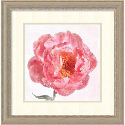 Floret V Framed Painting Print
