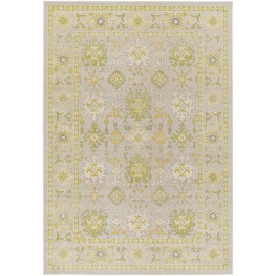 Velay Gray/Green Area Rug Rug Size: Rectangle 69 x 98