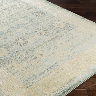 Masam Beige/Aqua Area Rug Rug Size: Rectangle 110 x 211