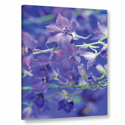 Delphina Photographic Print on Wrapped Canvas