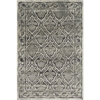 Florac Gray/Neutral Area Rug Rug Size: Rectangle 51 x 76