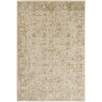 Florac Brown/Yellow Area Rug Rug Size: Rectangle 51 x 76