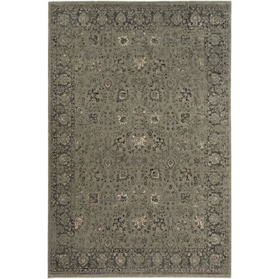 Florac Gray Area Rug Rug Size: Rectangle 78 x 11