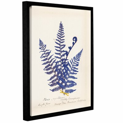 Botanical Fern IV Blue Framed Graphic Art on Wrapped Canvas
