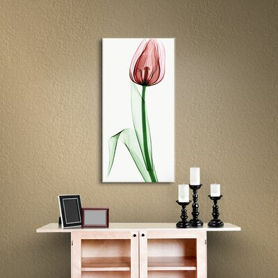 Tulip II Graphic Art on Wrapped Canvas