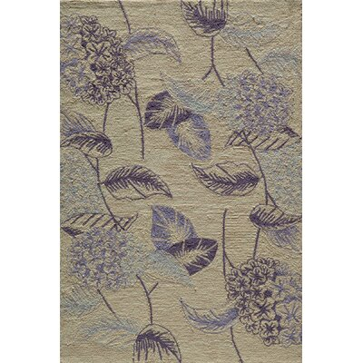 Carleon Hand-Hooked Lilac Area Rug Rug Size: Rectangle 36 x 56