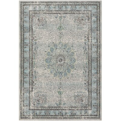 Mekhi Blue/Gray Area Rug Rug Size: Rectangle 22 x 3