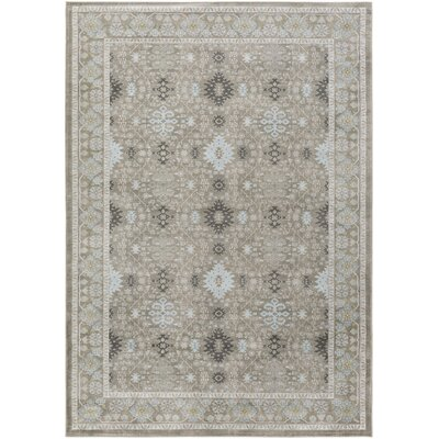 Riviere Grey/Green Area Rug