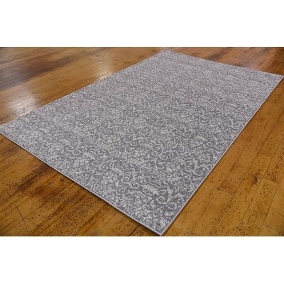 Alcera Gray Area Rug Rug Size: Rectangle 33 x 53