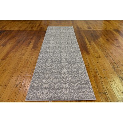Alcera Gray Area Rug Rug Size: Runner 27 x 10