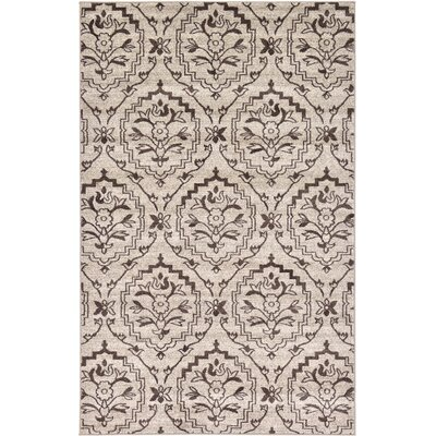 Sherryl Beige Area Rug Rug Size: Rectangle 33 x 53