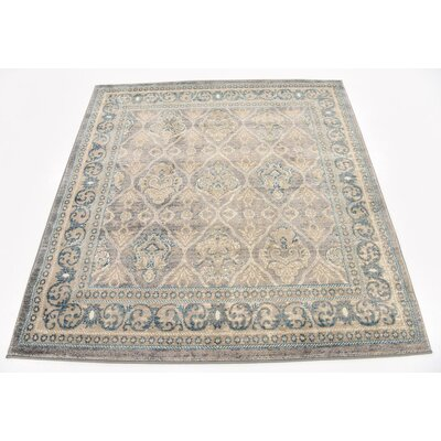 Claire Gray Area Rug Rug Size: Square 5
