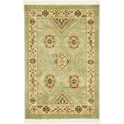 William Light Green Area Rug Rug Size: 2 x 3