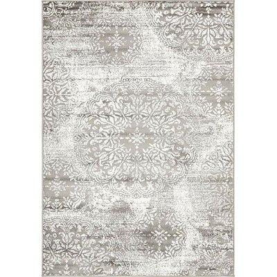 Socotrine Gray Area Rug Rug Size: 4 x 6