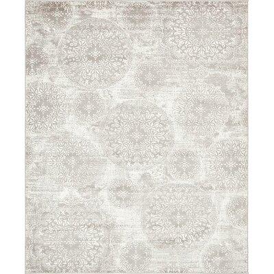 Socotrine Light Gray Area Rug Rug Size: 8 x 10