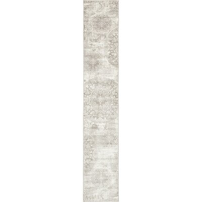 Socotrine Light Gray Area Rug Rug Size: Runner 2 x 13