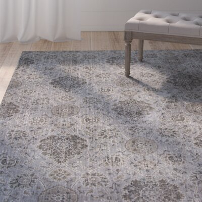 Benoit Silver Area Rug Rug Size: 22 x 37