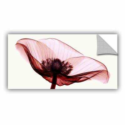 Anemone I Graphic Art