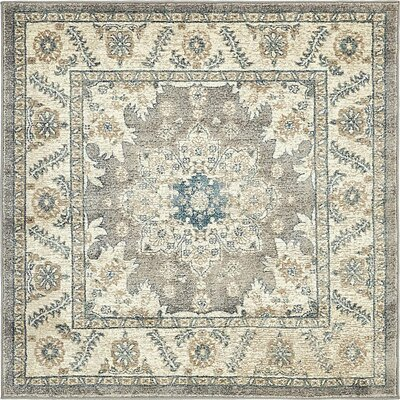 Claire Gray Area Rug Rug Size: Square 4