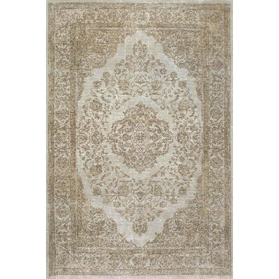 Ashberry Brown Area Rug Rug Size: 4 x 6