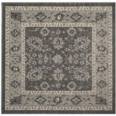 Carmel Dark Gray/Beige Area Rug Rug Size: Square 67