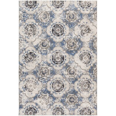 Raquel Blue/Gray Area Rug Rug Size: Rectangle 54 x 78