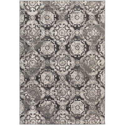 Raquel Charcoal & Black Area Rug Rug Size: Rectangle 54 x 78