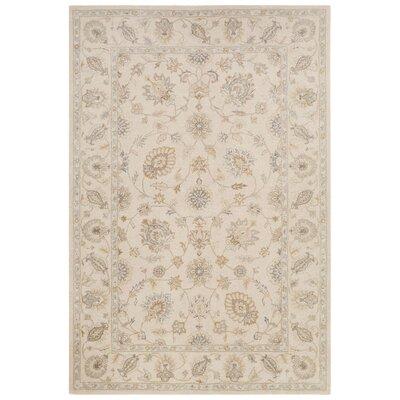 Onatas Hand-Tufted Ivory/White Area Rug Rug Size: 5 x 8