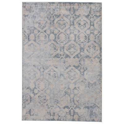 Oneil Angora/Tapestry Area Rug Rug Size: Rectangle 76 x 96