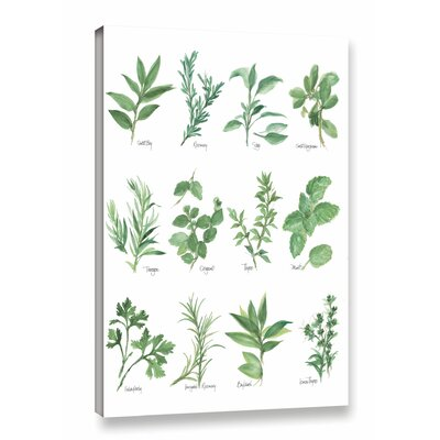 'Herb Chart' by Chris Paschke Graphic Art on Wrapped Canvas in White/Green