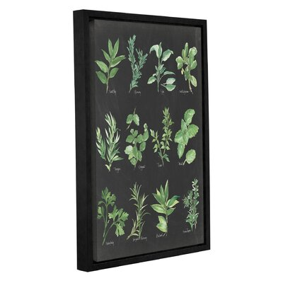 'Herb Chart' by Chris Paschke Framed Graphic Art in Black/Green