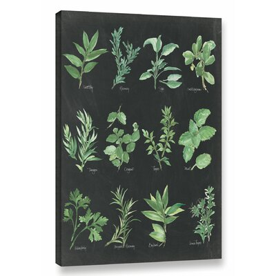 'Herb Chart' by Chris Paschke Graphic Art on Wrapped Canvas in Black/Green