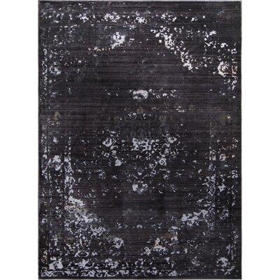 Brunet Charcoal Area Rug Rug Size: 66 x 82