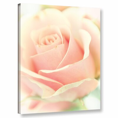 Apricot Rose Photographic Print on Wrapped Canvas