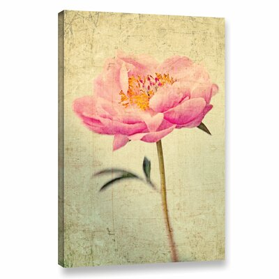 Coral Peony 2 Graphic Art on Wrapped Canvas Size: 12
