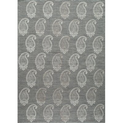 Dyann Hand-Woven Gray Wool Area Rug Rug Size: Rectangle 36 x 56
