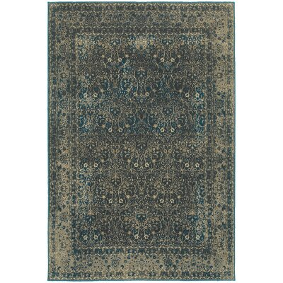 Pheonix Navy/Gray Area Rug Rug Size: Rectangle 53 x 76